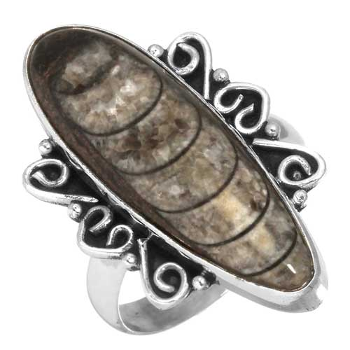 Wholesale Extended Line of Wholesale Rings (Product ID = 23297_R8.5)