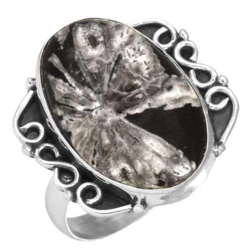 Wholesale Extended Line of Wholesale Rings (Product ID = 23483_R9.5)