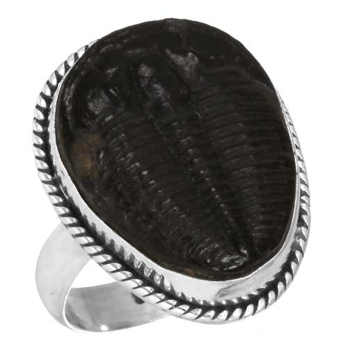 Wholesale Extended Line of Wholesale Rings (Product ID = 23660_R6)