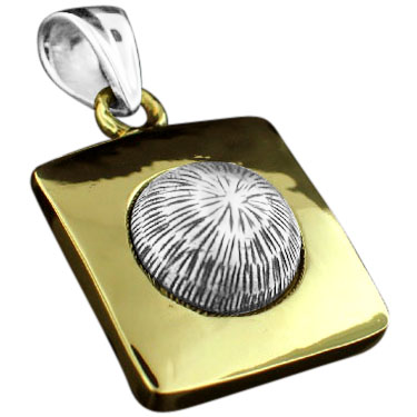 Sterling silver Silver & Brass Combination pendant ID=srp272Brass